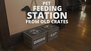 diy pet feeding station video diy