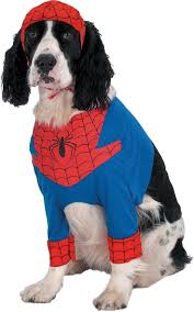 halloween spiderman costume 116 best holiday images on pinterest costumes halloween ideas