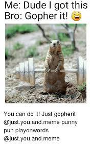 Gopher Meme - 25 best memes about punny pun punny pun memes