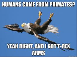 Funny T Rex Meme - humans come from primates yeah right and i got t rex arms misc
