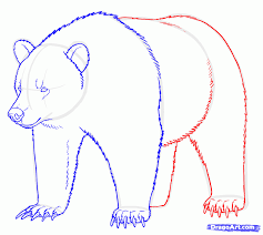 how to draw a polar bear face step by step