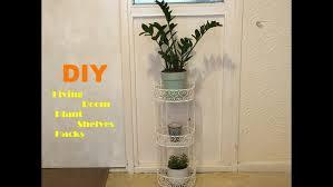 diy hacks youtube living room livingom plant diy plants hacks youtube hot picture