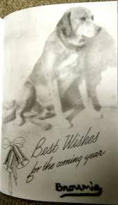 photo the brownie christmas card u2013 brownie the town dog of