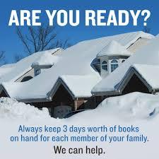 The Biggest Blizzard Blizzard Prep Stock Up On Books Shelf Awareness