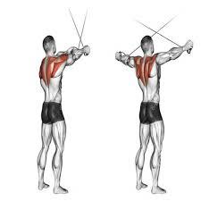 shoulder workouts cross back fitness24hour