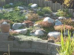 340 best garden u0026 landscape ideas u0026 designs images on pinterest