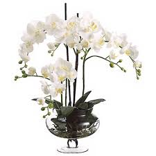 faux orchids orchids in clear glass vase 25 high faux flowers n6668