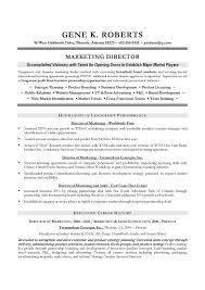 Cto Sample Resume by Cto Sample Resume Examples Rescueresumes Professional Resume