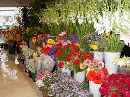 flower shops tehran s ordinary flower shops