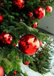 outdoor lighted trees lights decoration