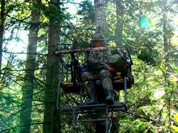 Elevated Bow Hunting Blinds Ground Blinds Crossbows U0026 Black Bears Bowhunting Com