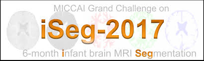 Challenge On Miccai Grand Challenge On 6 Month Infant Brain Mri Segmentation