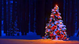 costco tree ornaments lovely inspirational