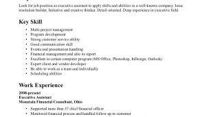 Advertising Resume Written Cv Cbshow Co