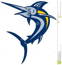 blue marlin stock vector illustration of billfish illustration
