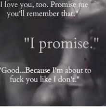 I Fucking Love You Memes - i love you too promise me you ll remember that i promise good