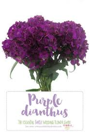 purple flower complete guide to purple wedding flowers purple flower names pics