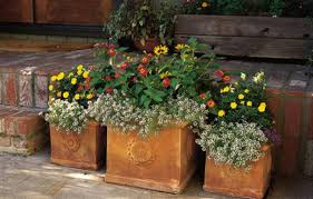 Flower Pot Arrangements For The Patio How To Plant In Pots This Old House