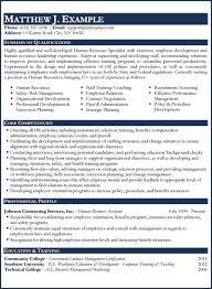 Hr Resume Sample by Download Professional Resume Writing Haadyaooverbayresort Com