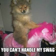Too Much Swag Meme - this dog has too much swag for my liking by jbmcs meme center