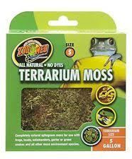 reptile terrarium ebay