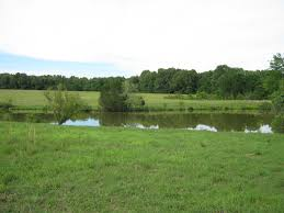 Acreages For Sale by Arkansas Ranches And Land For Sale U2013 United Country Ranches