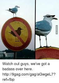 Watch Out Guys Meme - 25 best memes about weve got a badass weve got a badass memes