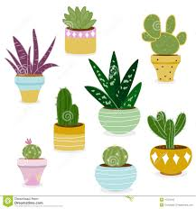 cactus and succulent plants in pots stock vector image 47523492