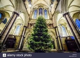 the annual christmas tree inside salisbury cathedral wiltshire