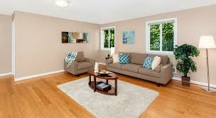 living room with hardwood floors carpet in seattle wa zillow