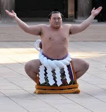 spirit halloween sumo wrestler ox281286668626983528 jpg 976 1024 sumo pinterest sumo