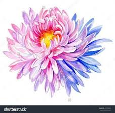 nov birth flower tattoos pictures to pin on pinterest tattooskid
