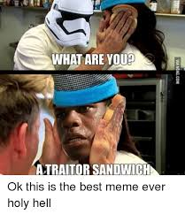 What Is The Meme - what are youp atraitor sandwich ok this is the best meme ever holy