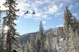 winter rates and times top of the rockies zip line