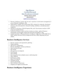 resume data warehousing experience