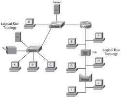 logical layout of network network topologies expert networking