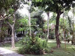 rina u0027s bungalows for rent in kuta bali indonesia