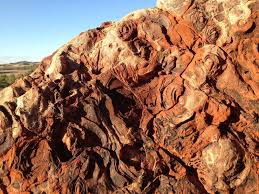 life and rocks may have co evolved on earth science smithsonian