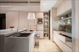 Kitchen Wall Storage Solutions - kitchen kitchen cabinet storage ideas small kitchen layouts over