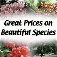 Gardening Zones Canada - arizona vegetable u0026 fruit gardening for the arizona desert