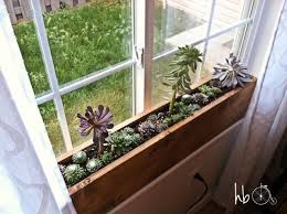 Indoor Windowsill Planter | how to make a succulent window box window plants and box