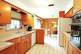 Designer Kitchen Hardware Kitchen Cabinets Mid Century Modern U2013 Colorviewfinder Co