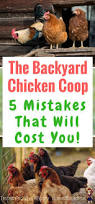 best 25 backyard chicken coops ideas on pinterest chicken coops