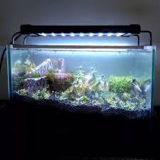 aquarium lights for sale aquarium led lighting fish tank smd led light l 11w extendable