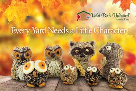 Backyard Wild Birds by Wild Birds Unlimited Discover A Refuge In Your Own Backyard