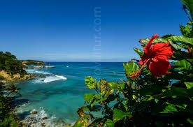 abreu dominican republic a luxury home for sale in amber coast