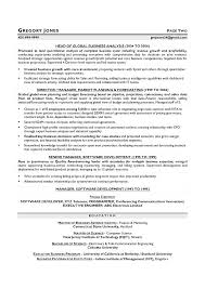 cfo resume exles cfo resume sle executive services writer dwighthowardallstar