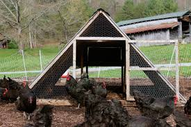 Small Backyard Chicken Coops by Chicken Coops That Work 5 Brilliant Ways Abundant Permaculture