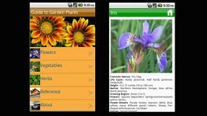 Irises How To Plant Grow by 9 Great Apps And Gadgets To Help Your Garden Grow