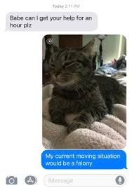 Cuddle Meme - cuddle meme tumblr
